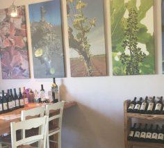Assaf Winery-Golan-Israel